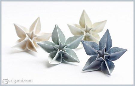 DIY Origami Carambola Flowers Tutorial