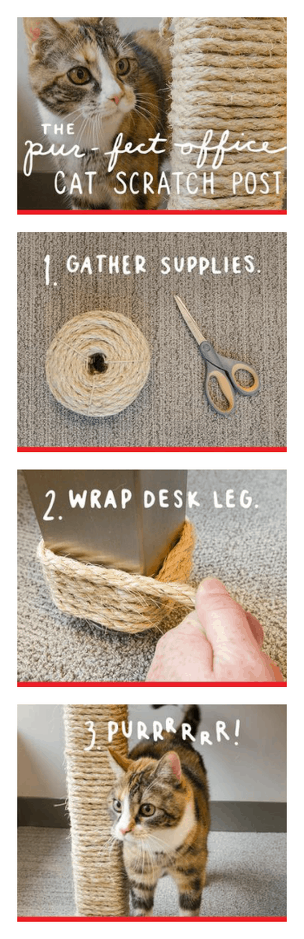 DIY Cat Scratching Post | 25 DIY Projects Your Pet Will Love