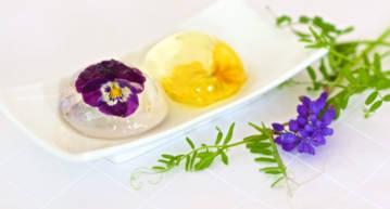 Jaffa Flower Jelly Drops