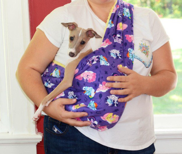DIY Soft and Cozy Pet Sling | 25 DIY Projects Your Pet Will Love